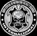 GEITS INTERNACIONAL LETRA BLANCA.png