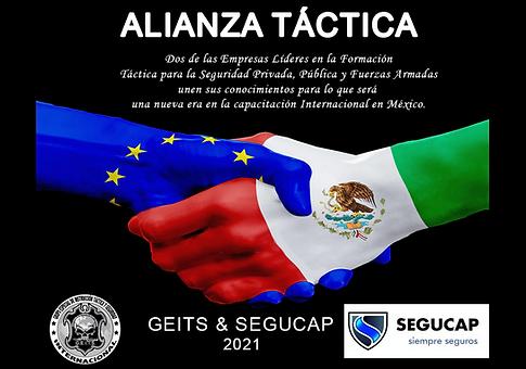 ALIANZA EUROPA SEGUCAP.png