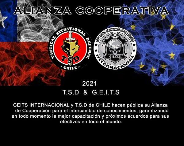 alianza chile.jpg