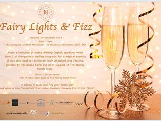 Join us at Fairy Lights & Fizz - 6th Dec 2018 - Winchester