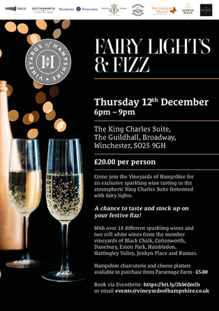 Fairy Lights and Fizz 2019!