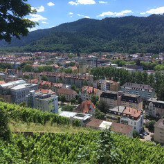 View over Freiburg Oberau