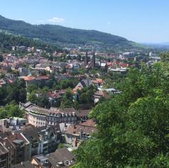View over Freiburg Wiehre
