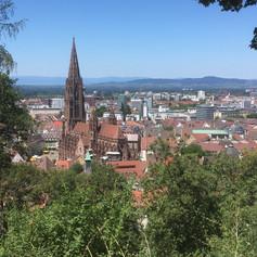 View towards Freiburg Münster