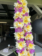 Plumeria and Orchid Lei