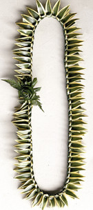 Song of India Green Lei