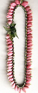 Song of India Pink Ginger Lei