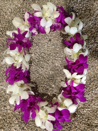 Double Combo Orchid Lei