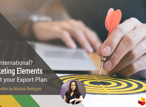 Going International? Check these 4 Marketing Elements to Start Your Export Plan
