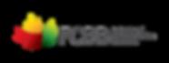 P-Logo-FCBB-GRADIENT.png