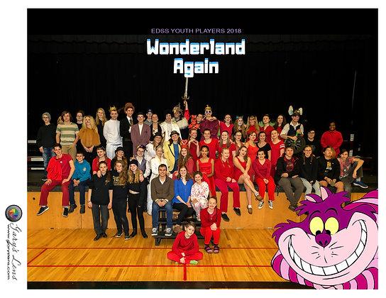 """Wonderland Again"" 2018 EDSS Group Photo"