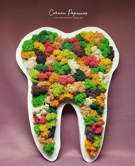 Rainbow Moss Tooth