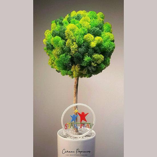 Logo Moss Tree