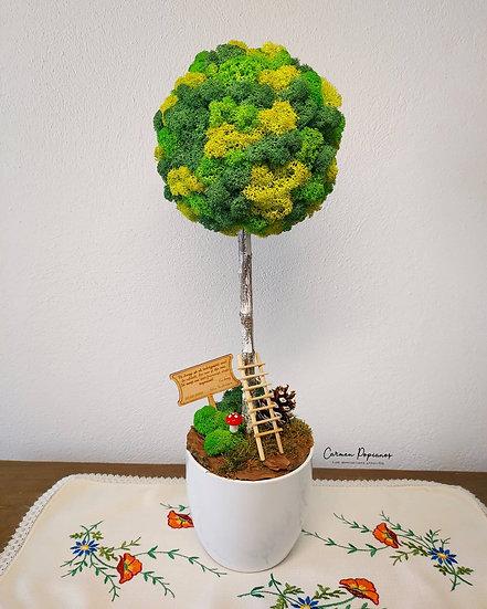 Green Moss Tree