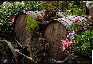 wine barrells