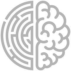 Brain Maze.jpg