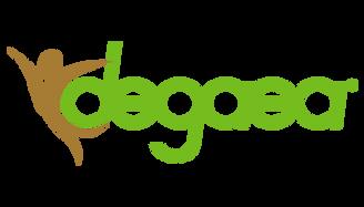 logoexpress.png