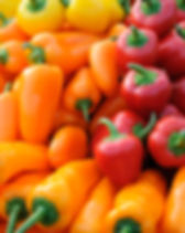 Background of colorful bell peppers.jpg