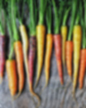 Colorful Rainbow carrot with their green