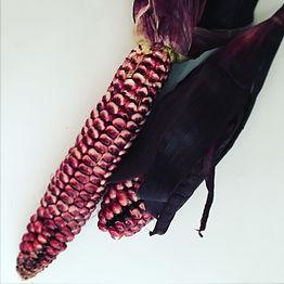 red corn.jpg