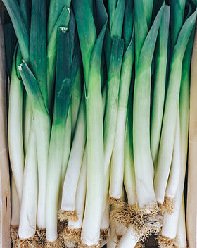 Stalks of leeks, green vegetables, local