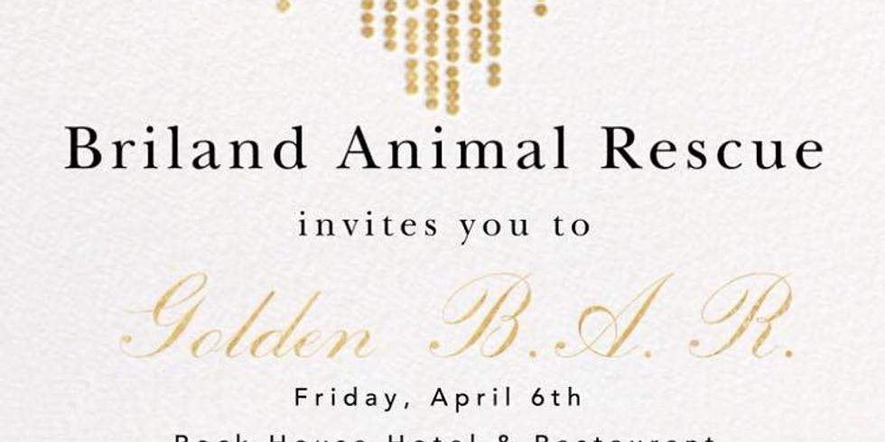 Briland Animal Rescue Fundraiser