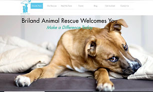 Briland Animal Rescue