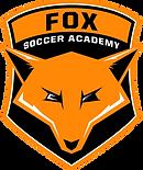 Logo FSA.png