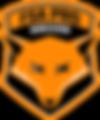 Logo FSA PRO Soccer.png