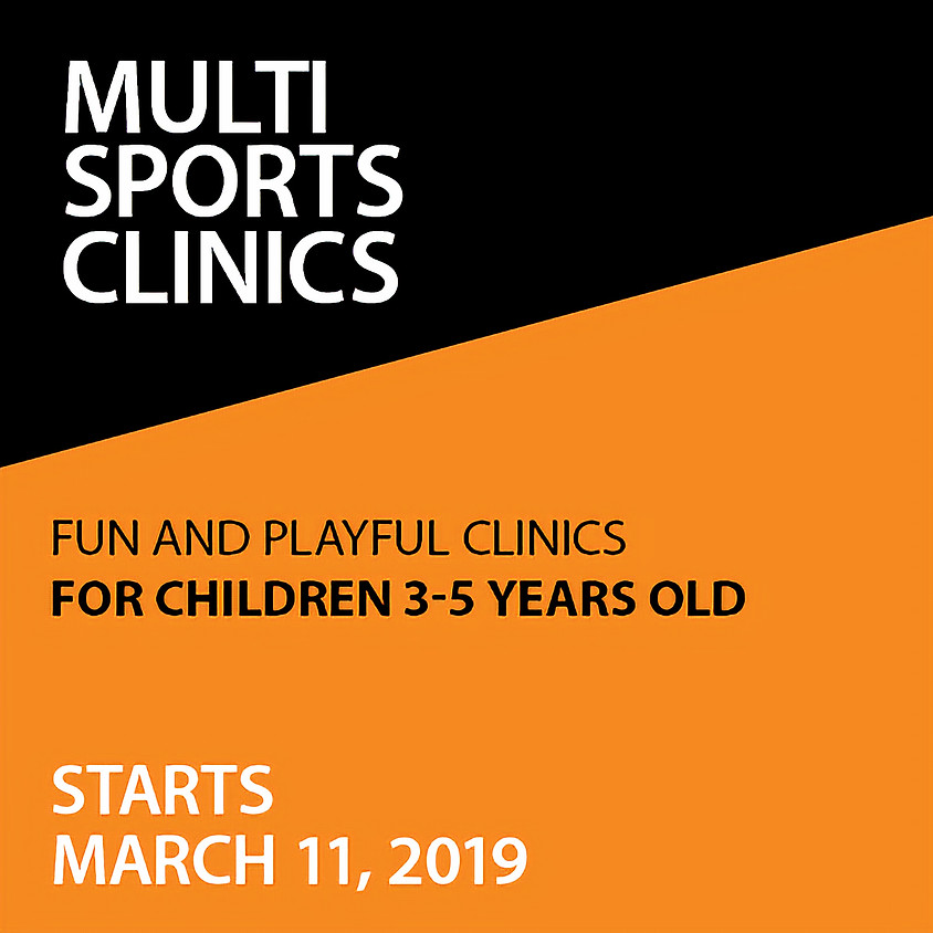 Little Foxes Multi-Sports Program