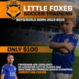 Little Foxes Website.jpg