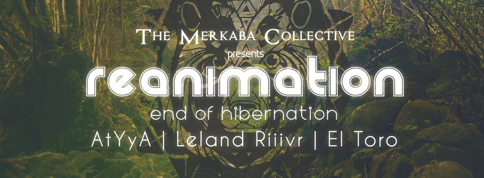 reanimation-01-01-01.jpg