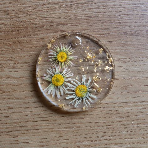 Daisys for someone special!