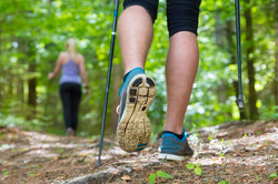 Arthurs Seat Adventure Park Trail Walking.jpg