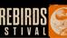 Firebirds Festival Germany