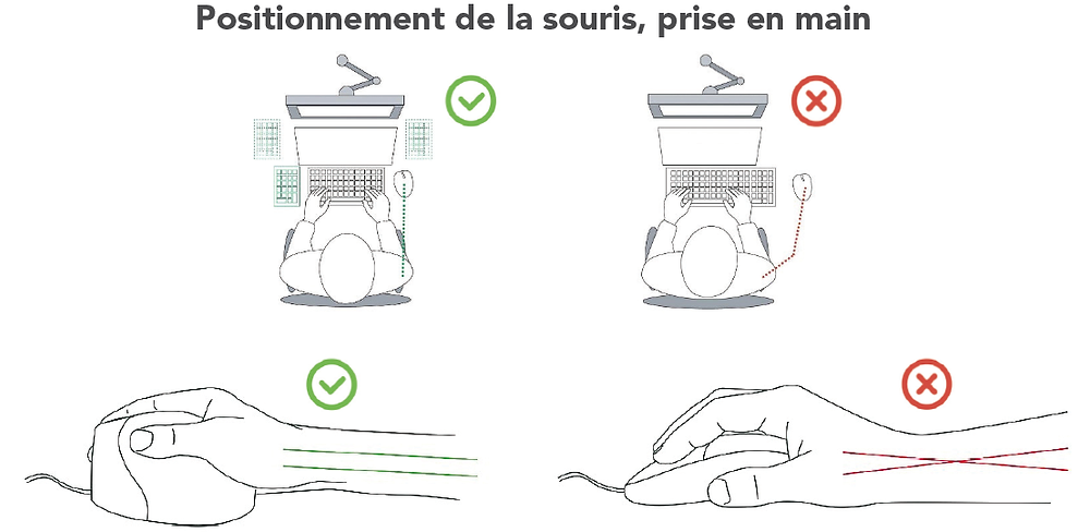 Prise en main de la souris verticale et bon positionnement