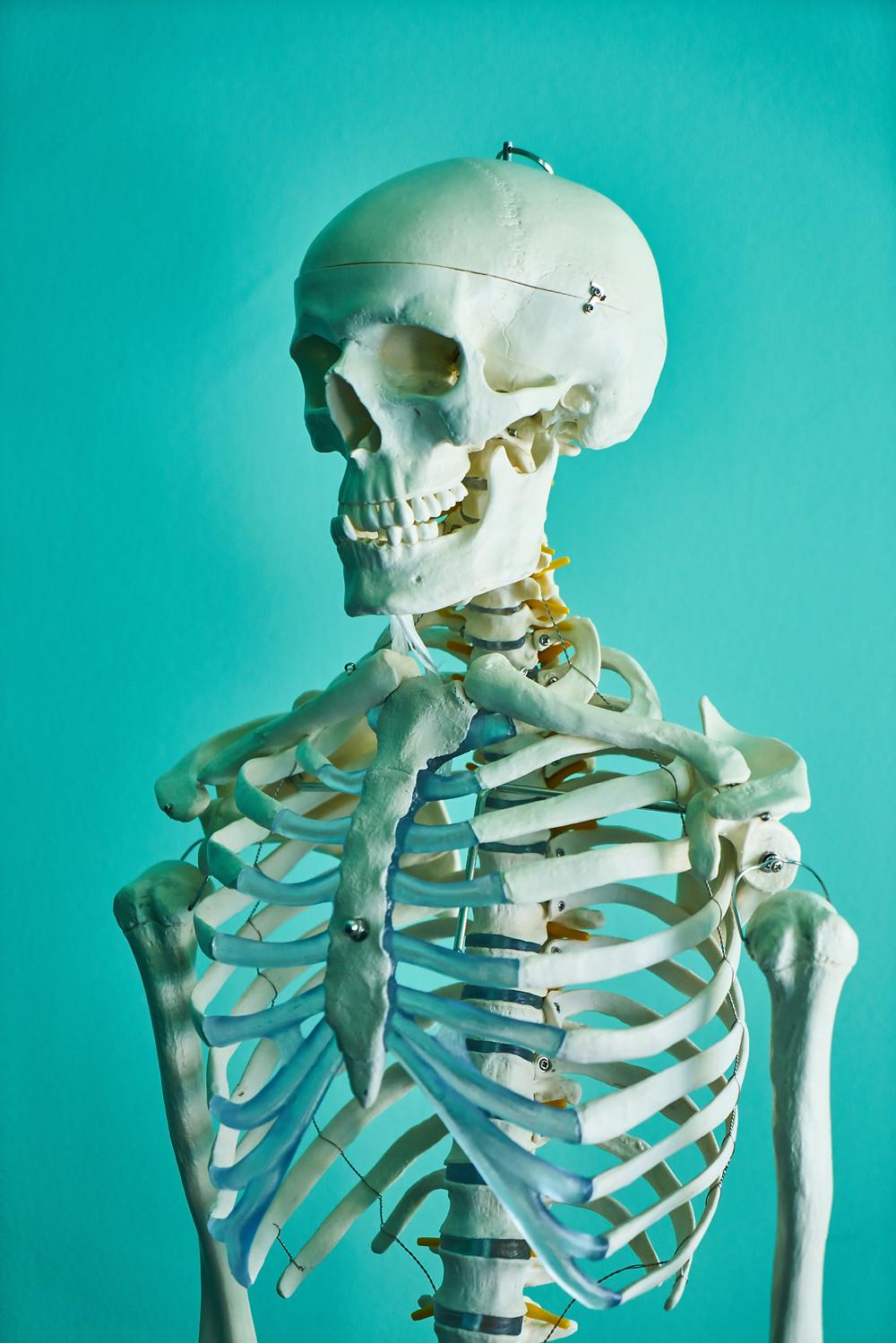 C'est quoi un trouble musculo-squelettique