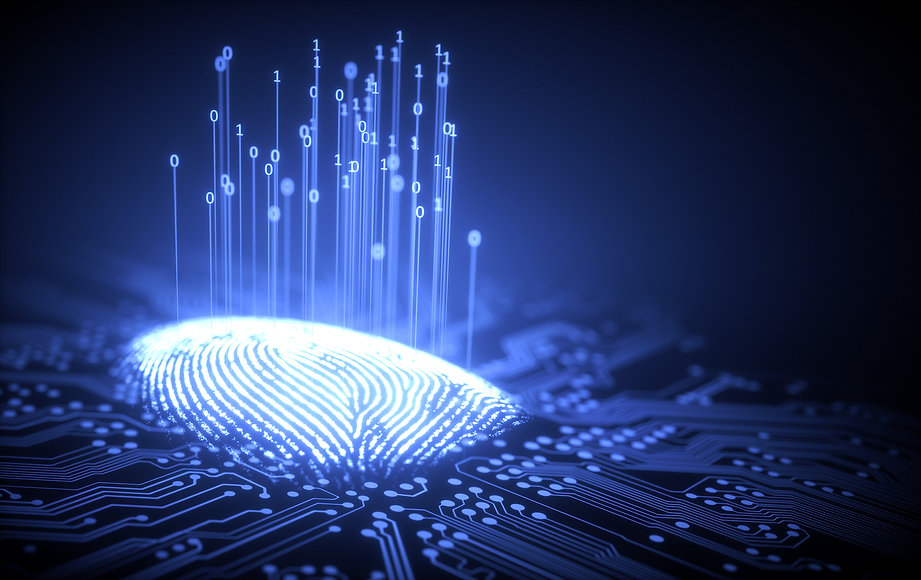 Digital fingerprint.jpg
