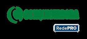 Logo Conquistadora.png