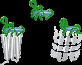 ChemBioChem_scheme1.png