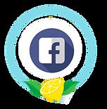 Lemonade Facebook Experience