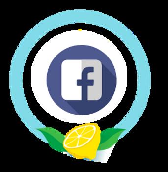 Lemonade School Facebook Ads