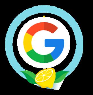 Curso de Adwords Lemonade School