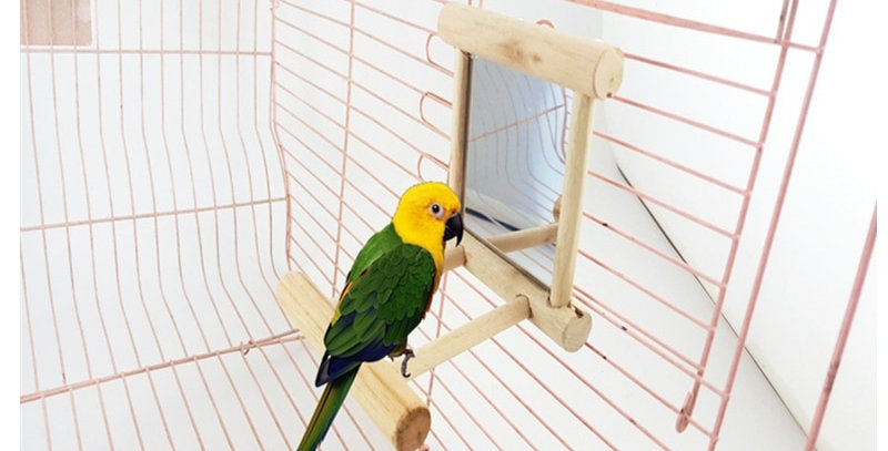 Pet Bird Mirror Wooden Play Toy With Perch