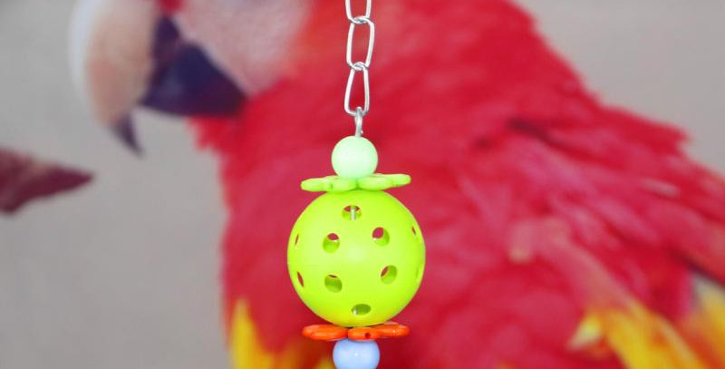3pcs Pet Parrot Toy Colorful Hollow Rolling Bell Ball Bird Toy