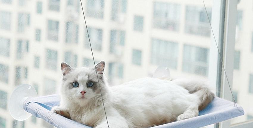 Cat Hammock Pet Hanging Sleeping Beds Cat Resting Seat Perch