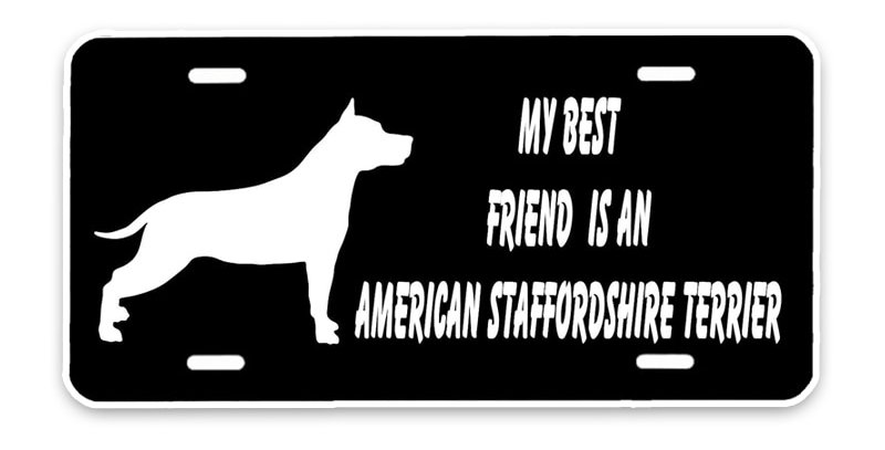 My Best Friend Is an American Staffordshire Terrier Dog