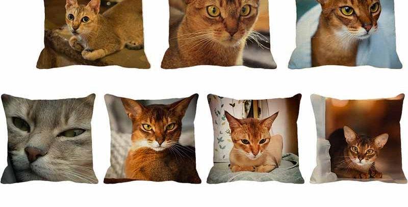 Chair Decor Throw Pillowcase