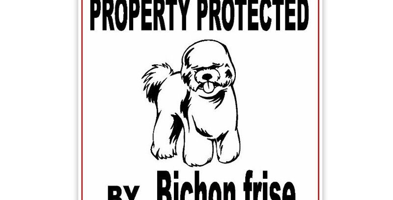 Property Protected by Bichon Frise Dog
