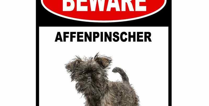 BEWARE AFFENPINSCHER GUARD DOG Car Sticker